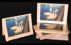 Sidney swans a sipping boxed art cards