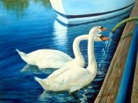 Sidney swans a sipping gallery image