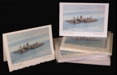 Boxed Art Cards - Wanna Go Fishing