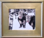 Silver Jasper Plein Air Frame sample