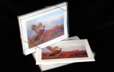 Boxed Art Cards - The Pheasant