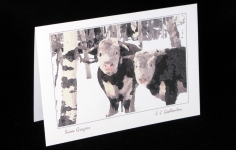 Critters - Snow Grazers - Art card