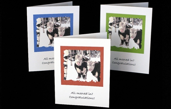 Note Card - All mooved in?  Congratulations!