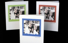 Note Card - Snow Grazers blank