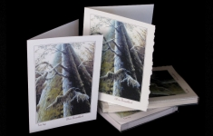 Forests - Treetops - art card