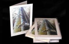 Boxed Art Cards - Treetops