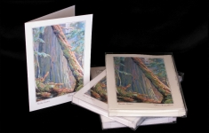Boxed Art Cards - Haida Gwaii
