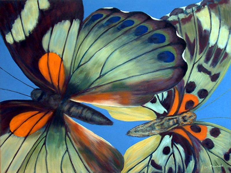 Butterfly Dreams 2